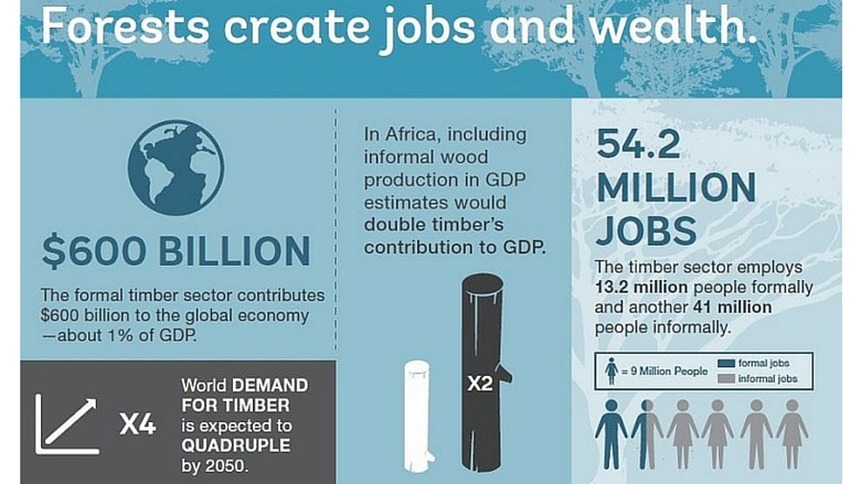 Forests Generate Jobs and Incomes