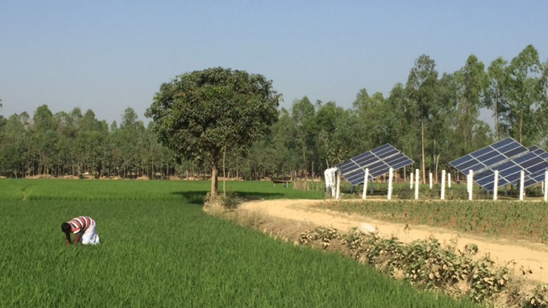 Solar irrigation pumps are improving the quality of life for farmers in Bangladesh.
