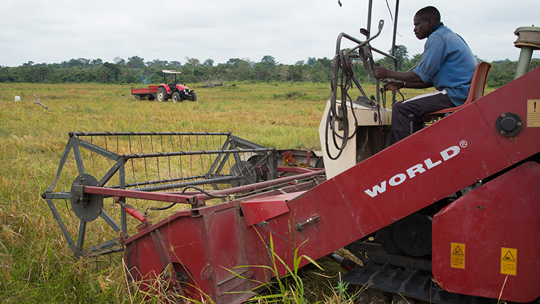 A farmer works in his field in Cote d'Ivoire.