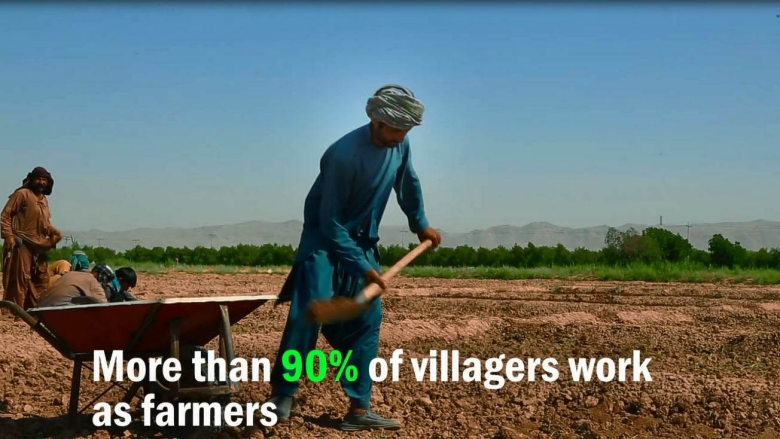 Supporting Agricultural Productivity in Rural Afghanistan