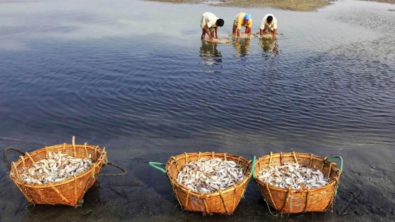 Bangladesh: Protecting The Environment And Natural Resource