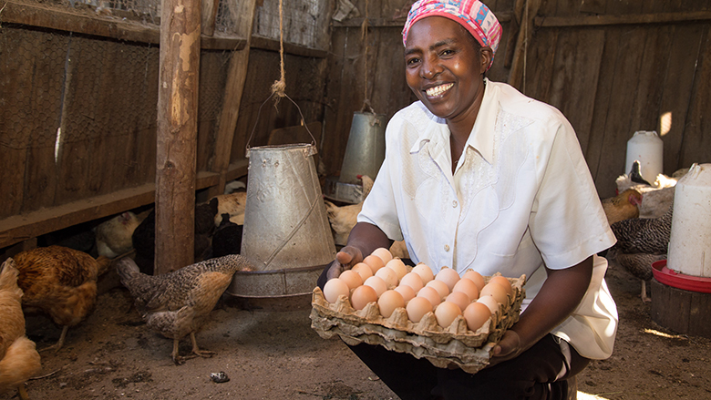 Poultry farmer Mercy Wairumu has transformed her farm into a thriving climate-smart business with support from the World Bank-supported KAPAP. Photo: Dasan Bobo / World Bank