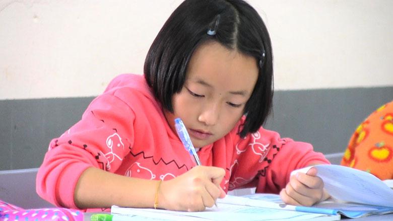 Homework help thailand