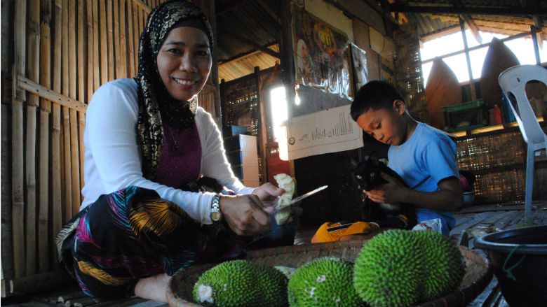The Mindanao Trust Fund: Supporting Reconstruction and Development