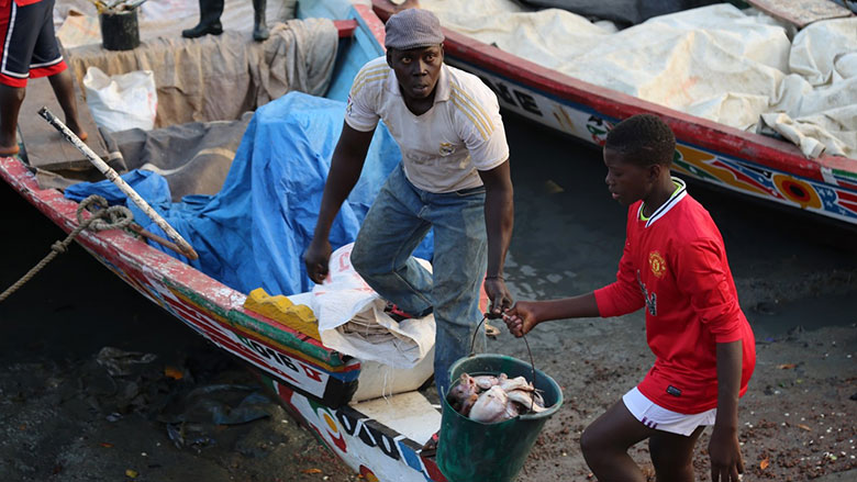 Fisheries and Livelihoods in Guinea Bissau: Scenes from the Bissau Fish Market
