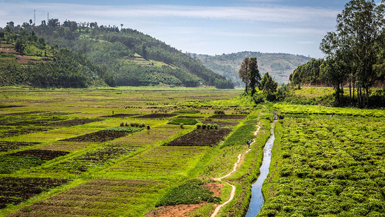 A tool for sustainable land use management in rwanda for Soil use and management