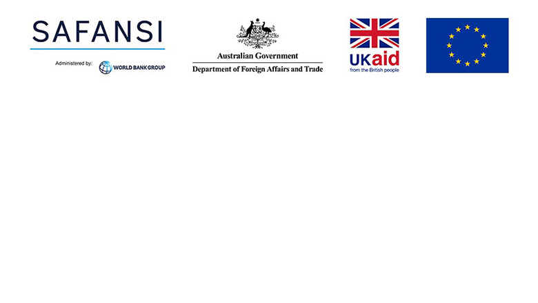 South Asia Food and Nutrition Security Initiative (SAFANSI)