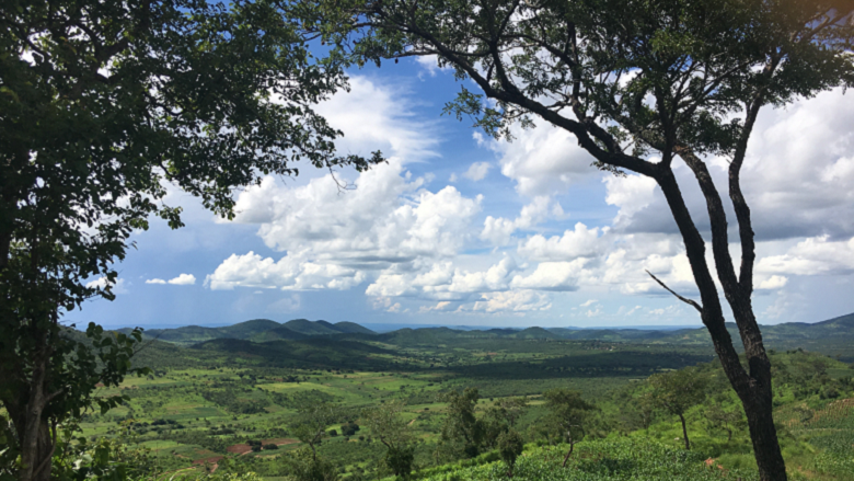 Zambia Takes The Keys Away From Drivers Of Deforestation