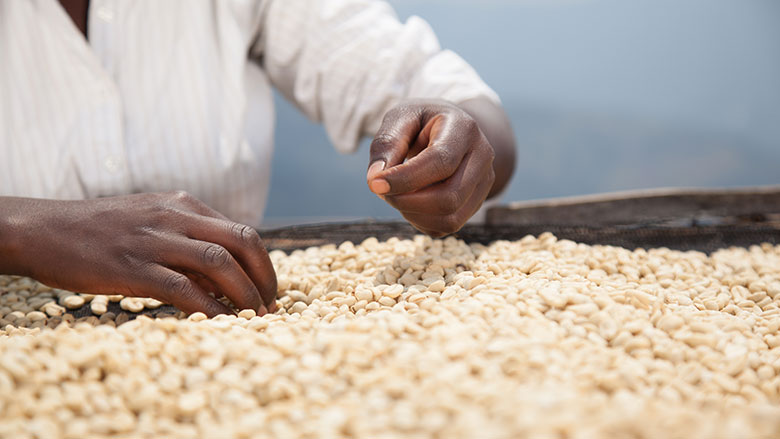 Farming Up: Uganda's Agriculture and Food System Can Create Jobs