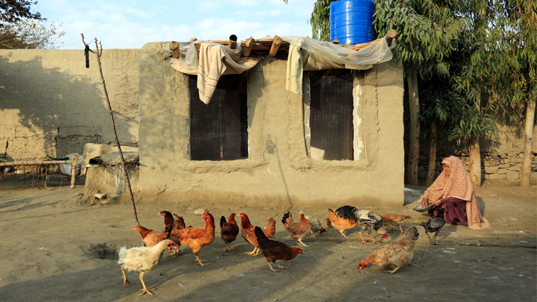 Livestock and Fish Farming Bring Self-Sufficiency to Rural