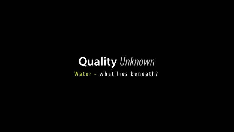 Quality Unknown: The Invisible Water Crisis - World Bank Group
