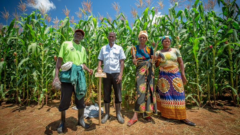 Zambian Farmers at Field School Reap Benefits of Climate-Smart Agriculture