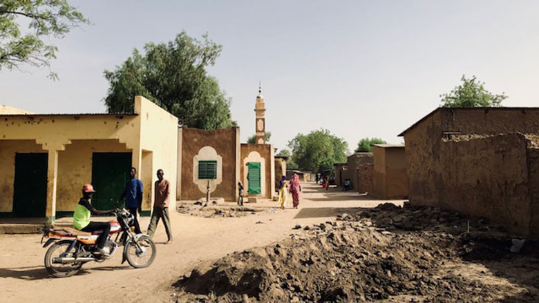 Female Tractor Drivers and Electricians in Chad Disrupt the