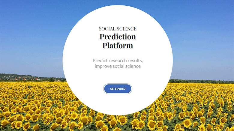 Social Science prediction platform image: field of sunflowers