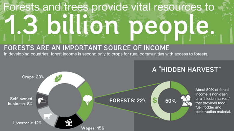 Infographic: Forests and Trees Reduce Poverty